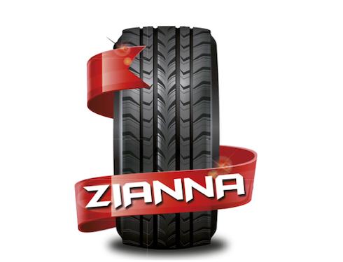 logo officina zianna